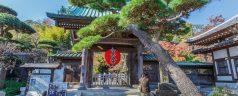 Découvrons Kamakura avec AsianWanderlust.com
