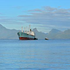 Se lancer dans une croisière en cargo mixte en Polynésie