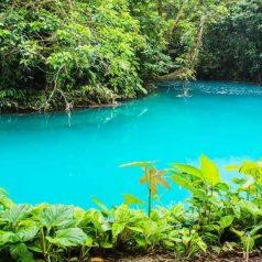 Quand faut-il partir au Costa Rica ?