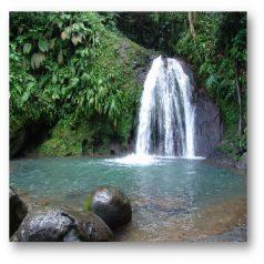 Balade en Guadeloupe : La Cascade aux Écrevisses