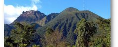 Excursions en pleine nature en Guadeloupe et en Afrique