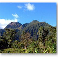 La Guadeloupe ou le paradis retrouvé