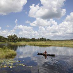 Les sites paradisiaques à ne pas manquer en Guyane