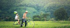Organiser son voyage au Laos, les bons à savoir