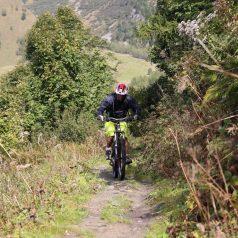 Zoom sur l'activité de VTT dans les Vosges