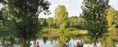 Tourisme et Culture du Sud-Ouest: Les courses landaises