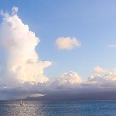 Quelle est la meilleure période pour visiter Guadeloupe ?