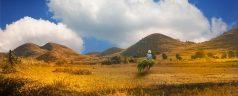 Que voir et que faire à Madagascar?