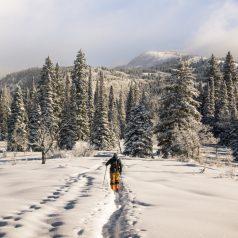 Ski alpin contre ski de fond : que choisir ?
