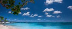 Sélection des plus belles plages de Martinique