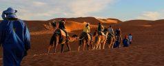 Pourquoi faire un séjour à Marrakech avec un spécialiste ?